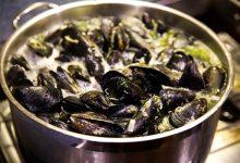 海鲜食物中毒频发,食用这些海鲜近期需要注意