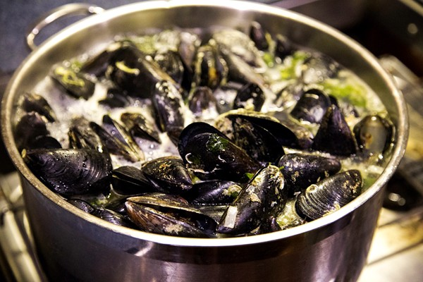 mussels-warning-after-coromandel-food-poisoning-outbreak