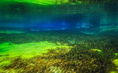 nelson-blue-lake