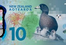 新西兰新版10元纸币介绍