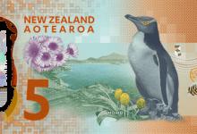 新西兰新版5元纸币介绍