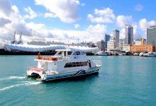 奥克兰北部 Gulf Harbour 渡轮服务增加到每天18班