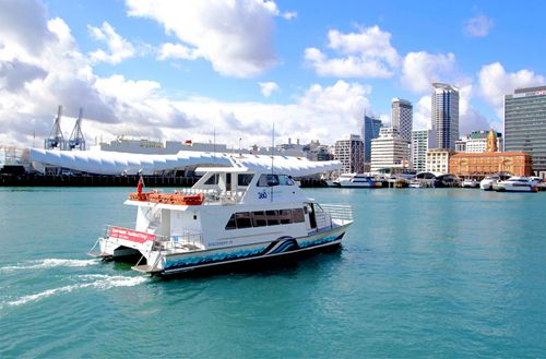 new-gulf-harbour-ferry-timetable