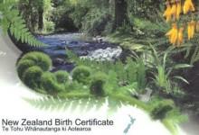 新西兰新生儿办理出生公证Birth Certificate