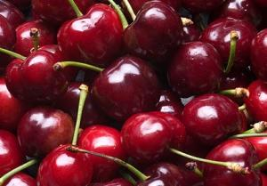 new-zealand-cherry