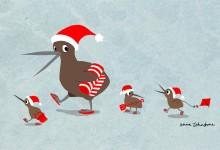 新西兰的圣诞节Christmas