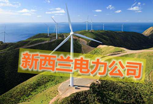 新西兰电力公司Power Companies