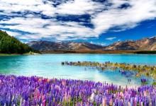 新西兰风景航拍《世界最后一片净土》
