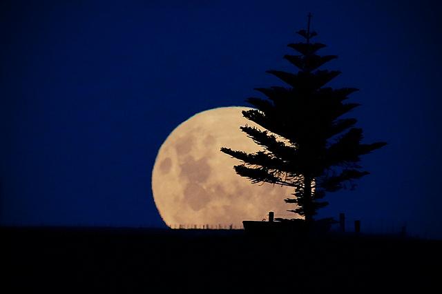 new-zealand-moon
