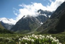新西兰国家公园National Parks