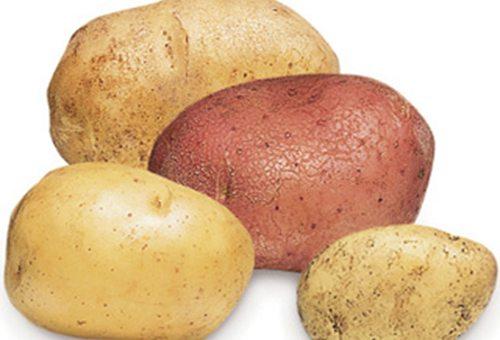 new-zealand-potatoes