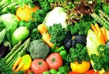 新西兰的素食主义者Vegetarian