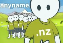 新西兰域名注册商Domain Name Registrar