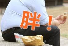 新西兰的肥胖问题有多严重?