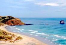 新西兰南岛奥塔哥Sandfly Bay