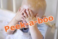 英文逗乐婴幼儿的游戏 Peek-a-boo