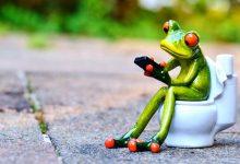 新西兰徒步过程中突然想上厕所怎么办?