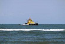新西兰港口的拖船 Tug