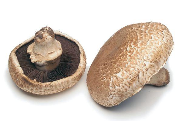 portobello-flat-mushroom