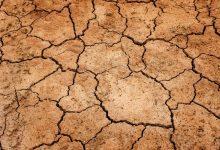 如何在新西兰的冬季摆脱皮肤干燥症状?