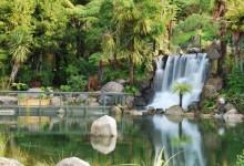 罗托鲁瓦彩虹泉公园Rainbow Springs