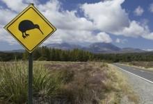新西兰汽车驾驶安全指南