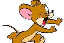 如何判断住宅中有老鼠?