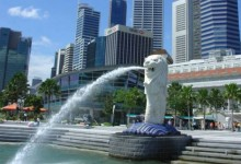 持新西兰签证申请新加坡过境签证VFTF