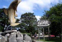 新西兰南岛乡村小镇戈尔 Gore