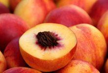 什么水果是 stone fruit?
