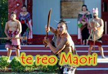 什么是 Te Reo Māori ?