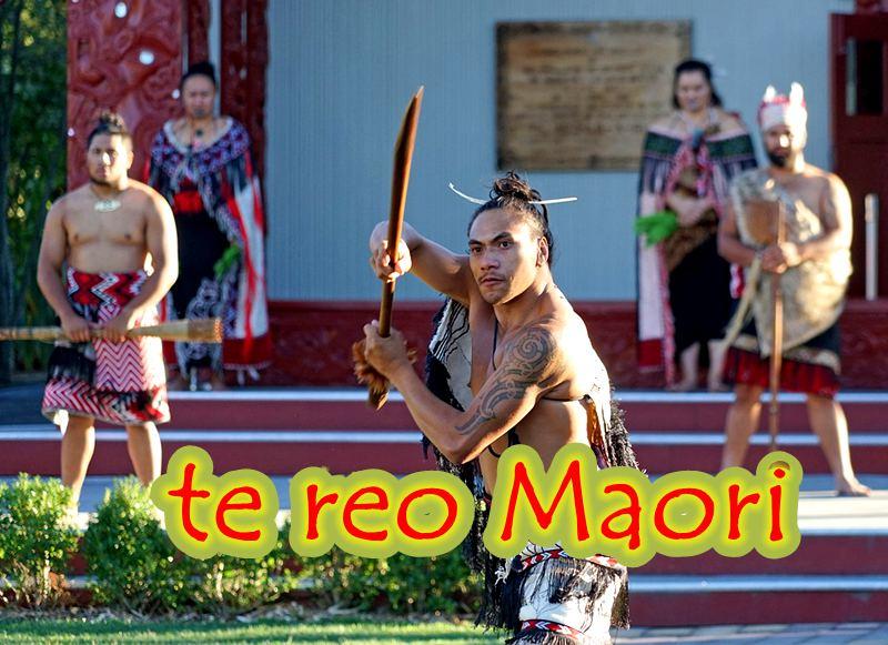 te-reo-maori