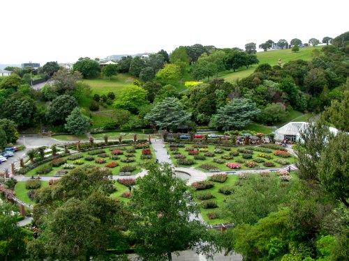 the-norwood-lady-rose-garden