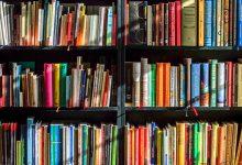 过去十年来,新西兰人最喜欢的书籍都有哪些?