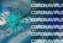 新西兰疫情更新,今日再增61例病例,总计708例