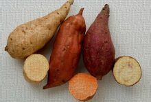 新西兰常见的红薯品种 Kumara Types