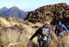 新西兰旅游签证简明知识