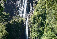 新西兰北岛怀卡托地区的怀里里瀑布 Wairere Falls