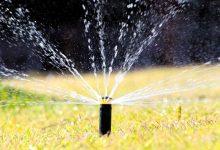 干旱的夏季如何给自家草坪浇水?