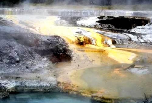 whakarewarewa-thermal-village