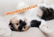 什么是 Mondayisation ?