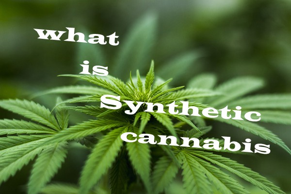 what-is-synthetic-cannabis