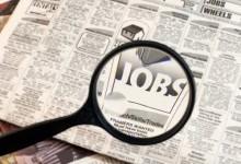 新西兰假日工作签证工作招聘网站信息