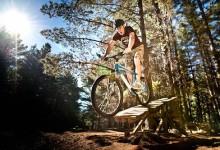 奥克兰伍德山森林公园Woodhill Forest